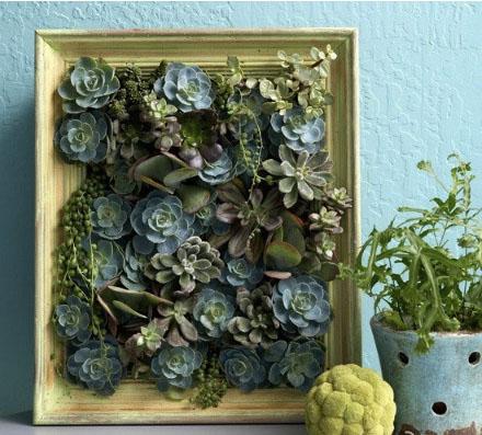paveikslas iš gėlių