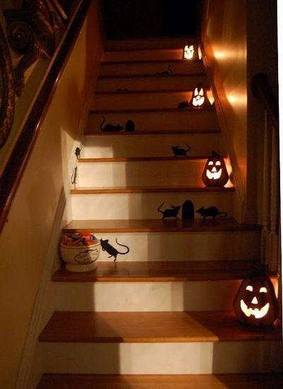 peles moliugai sviestuvai laiptai