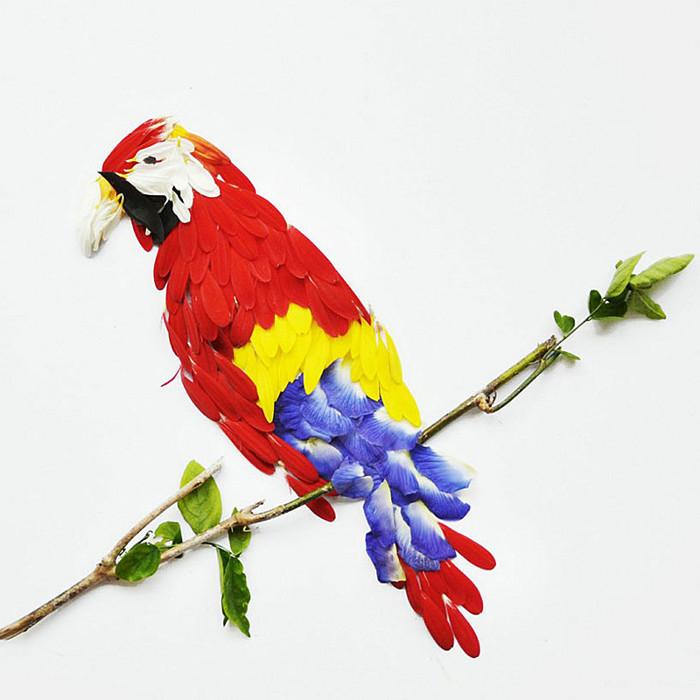 geliu ziedlapiai, papuga