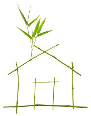 namo-karkasas-sakeles-augalai